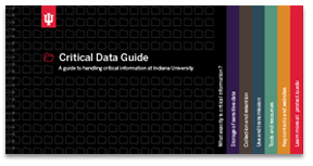 Critical Data Pocket-Guide